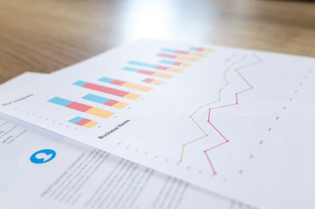 Visualized statistical data about ROI for the SEO campaign.